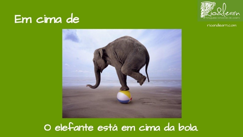 Preposiciones de Lugar en Portugués. Ejemplo con Em cima de: O elefante está em cima da bola.