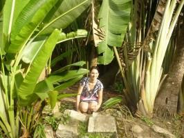 amazônia, jardim botânico, rio de janeiro, brasil, learn Portuguese and discover Rio de Janeiro with RioLIVE! Activities by Rio&Learn Portuguese School.