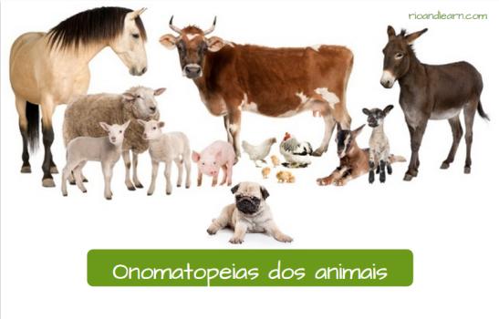 Portuguese animal onomatopoeia. Os sons dos animais. Cavalo égua cachorro gato boi vaca carneiro bezerro galo galinha burro. Portuguese animal onomatopoeia.