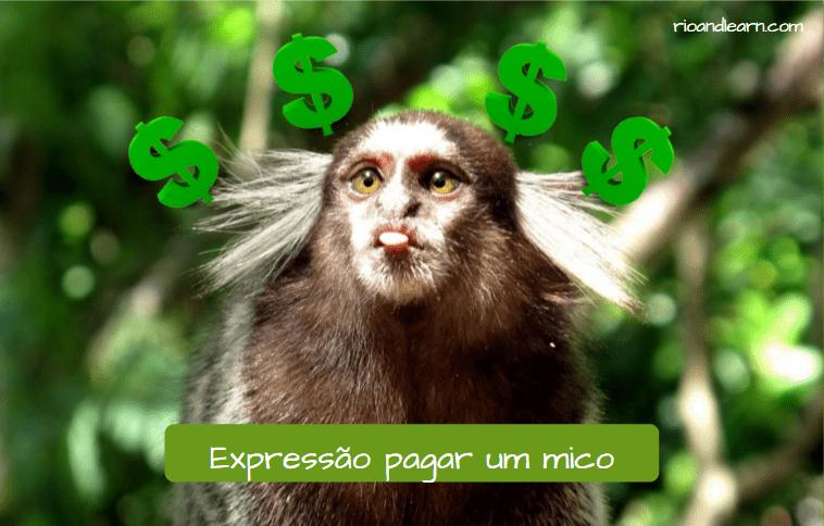 Expressão pagar um mico. Mico com a língua para fora. Cifrão. Pagando um mico