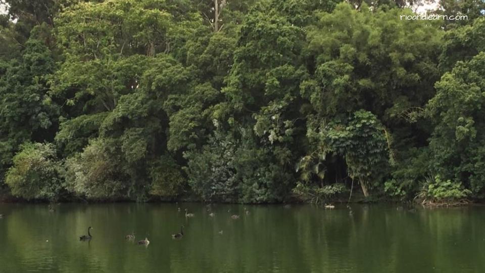 Parque Ibirapuera in São Paulo.