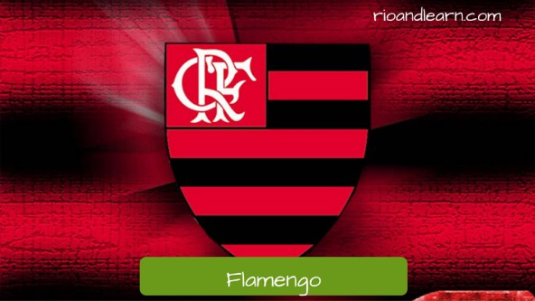 Flamengo is one of the most important football teams in Rio