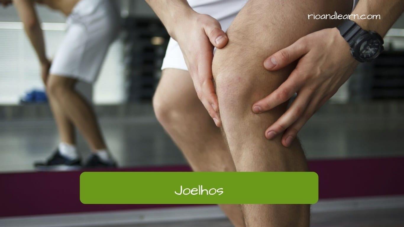 Joelhos en portugués: Rodillas