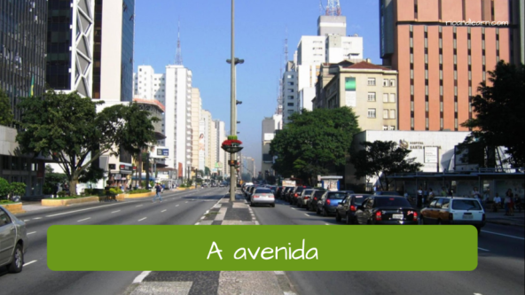 Types of roads in the city. The avenue: A avenida.