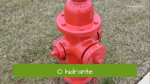 Vocabulário de cidade em Português para estrangeiros: O hidrante.