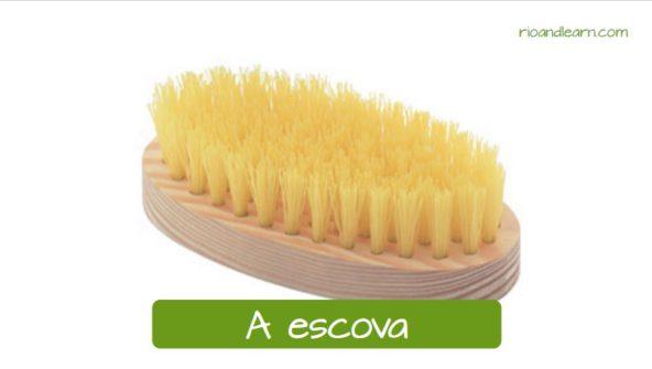 Nomes de materiais de limpeza em Português: A escova.