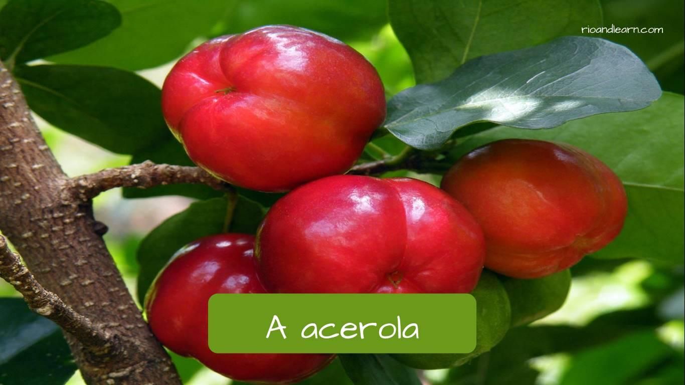 Acerola en portugués: Acerola.