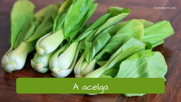 Vegetables in Portuguese: acelga - acelga chard