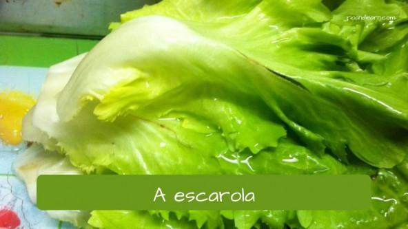 Escarola en portugués: escarola.