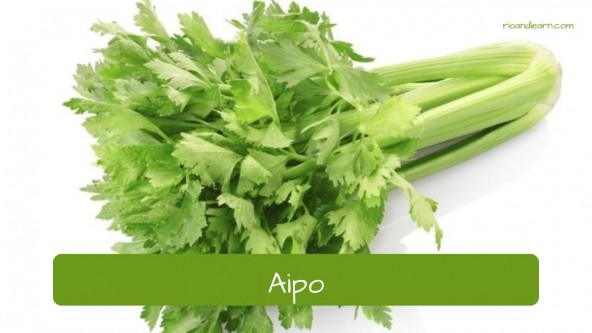 Spices in Portuguese. Celery: Aipo