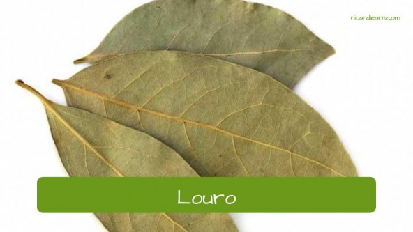 Tempos em Português: Louro.