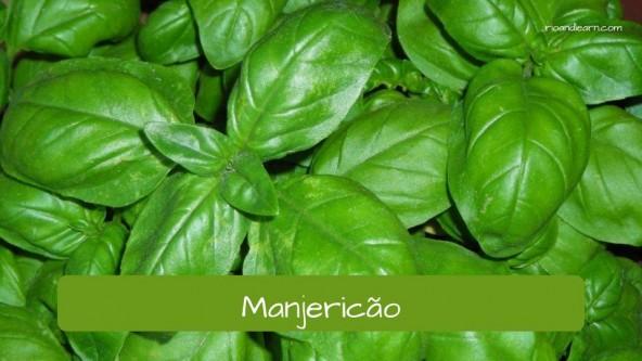 Spices in Portuguese. Basil: Manjericão.