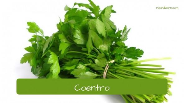 Spices in Portuguese. Cilantro: Coentro.