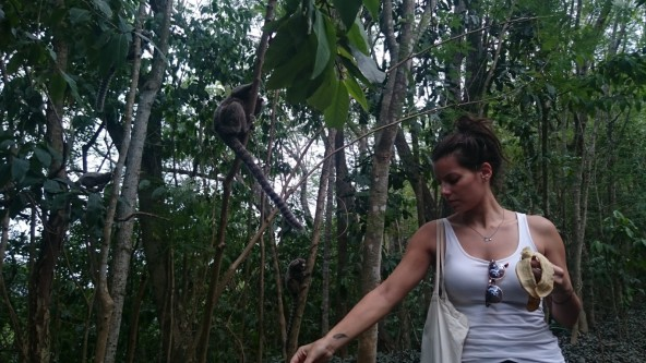 Feeding the monkeys at Morro do Leme
