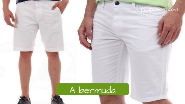 Roupas para homens. A bermuda. Bermuda branca masculina de zíper.
