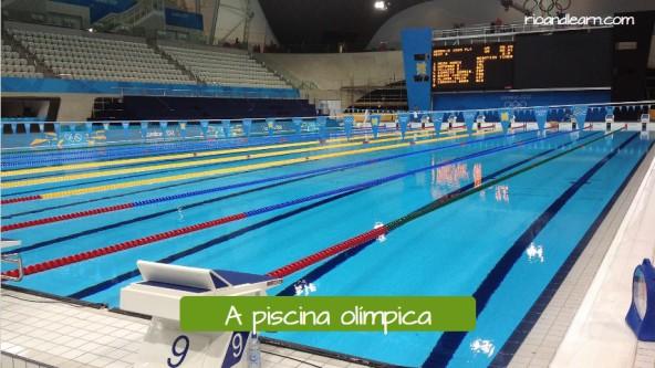 Vocabulario de Natación en Portugués. La piscina olímpica: A piscina Olímpica