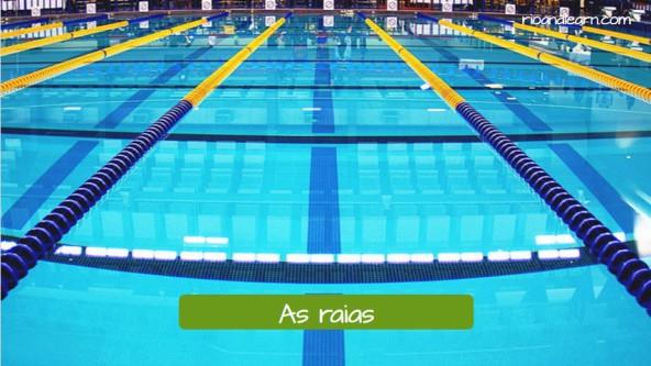 Las calles de la piscina olímpica en portugués: As raias da piscina olímpica.