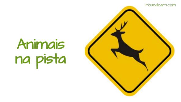 Brazilian traffic signs. Animal crossing. Animas na pista.