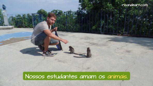 Los animales en Portugués. Nuestros estudiantes aman a los animales.