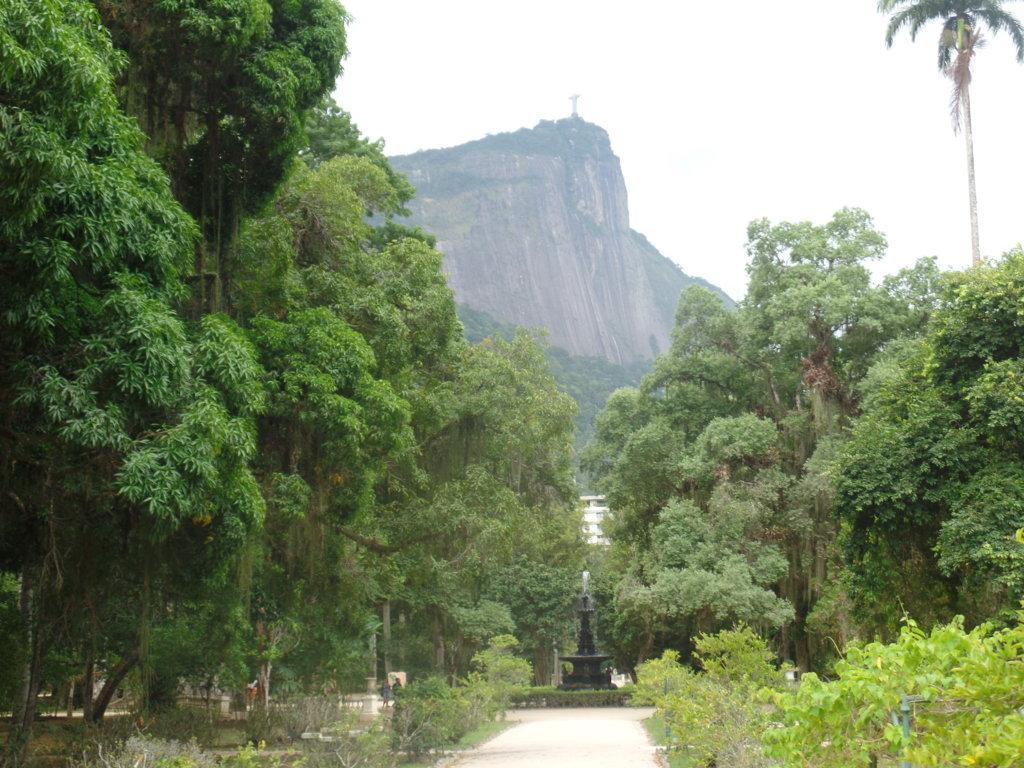 SAM_5682 Rio & Learn