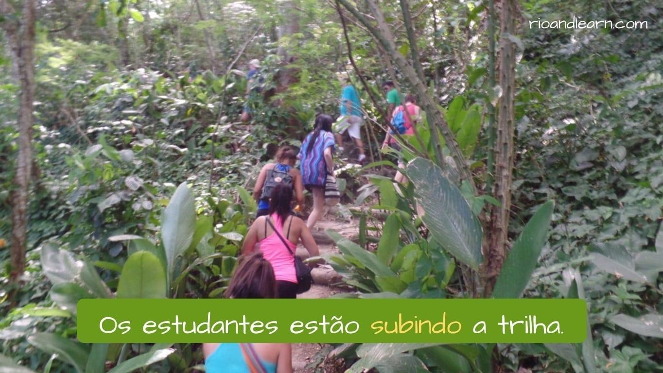 Ejemplo con la conjugación del verbo subir en portugués: Os estudantes estão subindo a trilha.