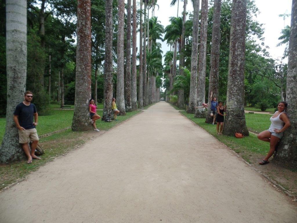 Mejores lugaresTurísticos de Río de Janeiro. Jardím Botânico.