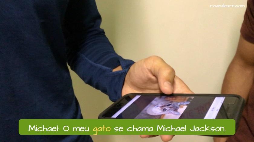 Portuguese slang Gato. Michael: O meu gato se chama Michael Jackson.
