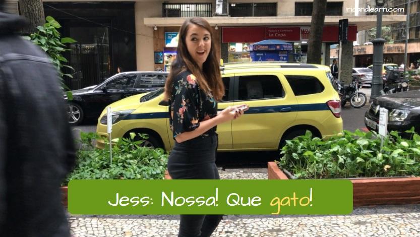 Portuguese slang Gato. Jess: Nossa! Que gato!