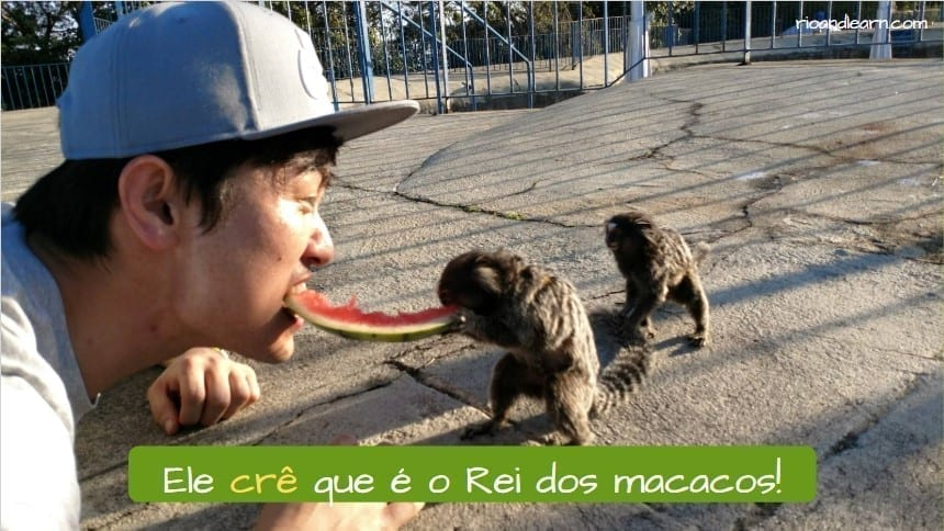 Ejemplo del verbo creer en portugués: Ele crê que é o Rei dos Macacos.