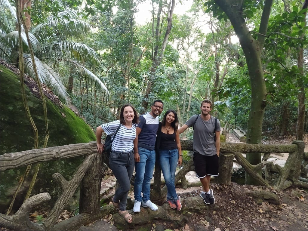 Beauties of Parque Lage. Exploring nature at Parque Lage