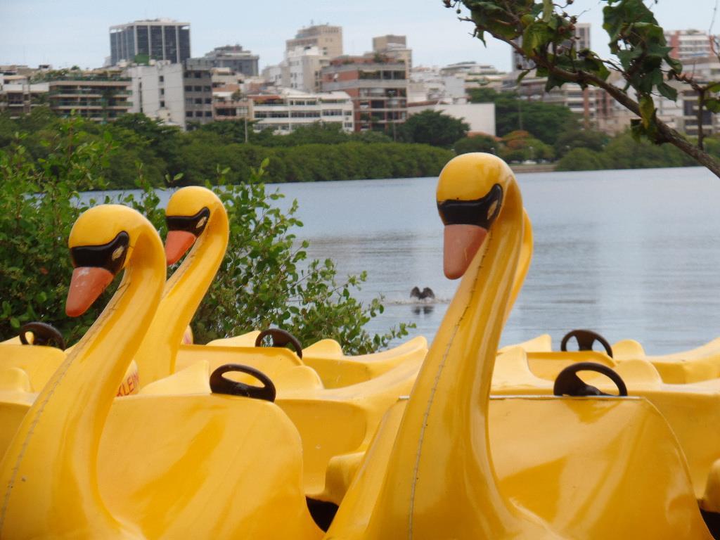 Yellow pedalos at Rodrigo de Freitas Lagoon in Rio de Janeiro. Yellow Paddle boats.