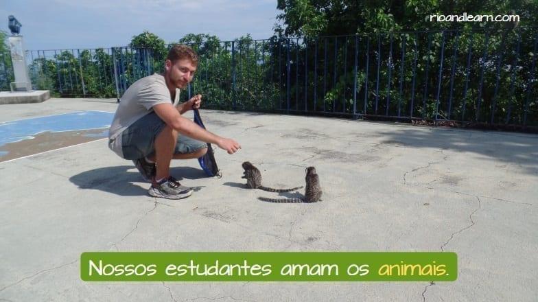 Nossos estudantes amam os animais. los animales en portugués.