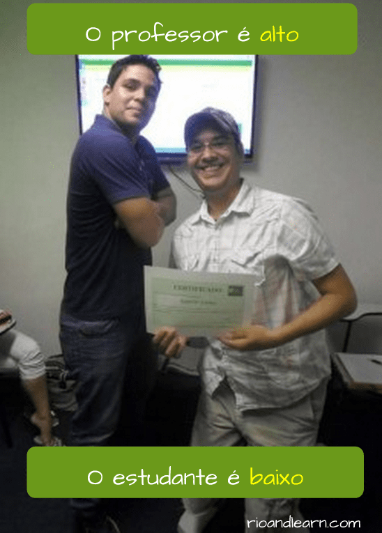 Los Antónimos en Portugués. O professor é alto. O estudante é baixo.